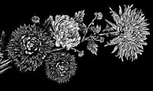 Изображение хризантем на стеле фото