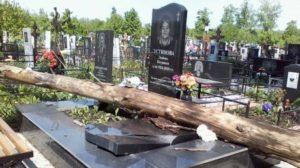Падение дерева на монумент фото