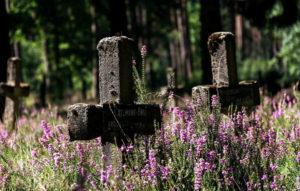 Заброшенное кладбище фото